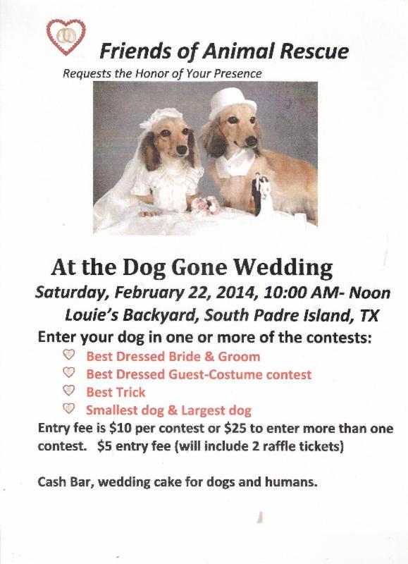 PET - BLOG PIC DOG GONE WEDDING