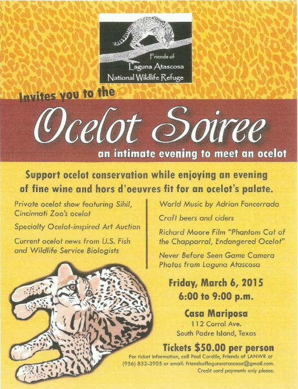 PET - BLOG PIC OCELOT SOIREE